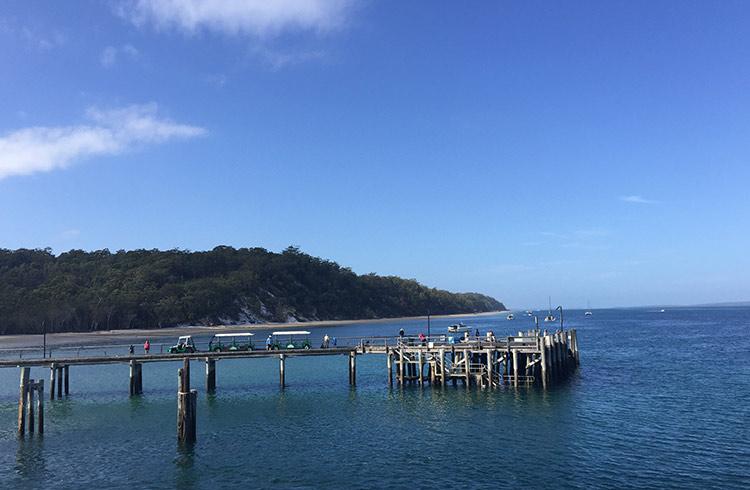 kingfisher-wharf