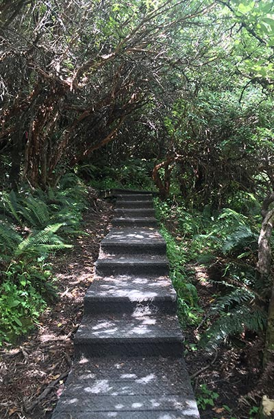 diamond-lake-steps