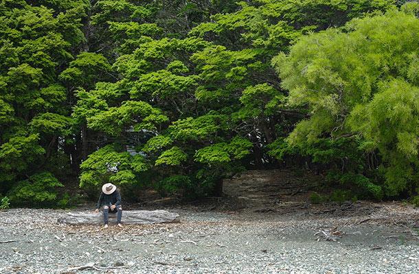 henry-creek-mark-on-a-log