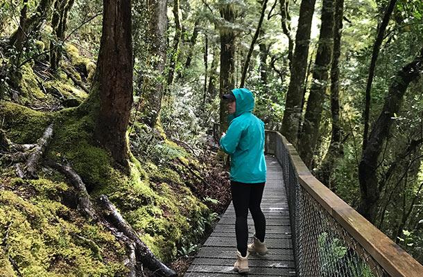 mossy-boardwalk