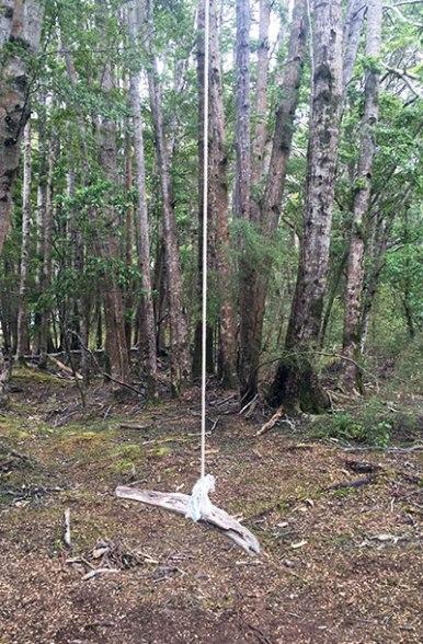 swing-henry-creek