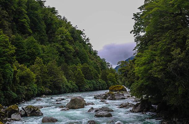 moraine-creek-milford-sound