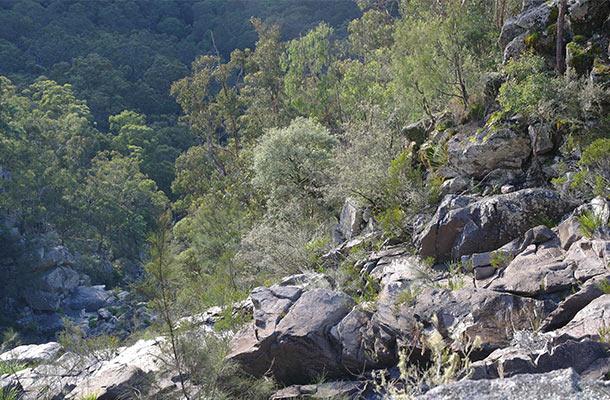 chaelundi-waterfall-questionmark