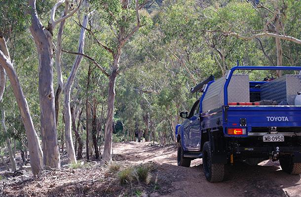 descent-to-campsite