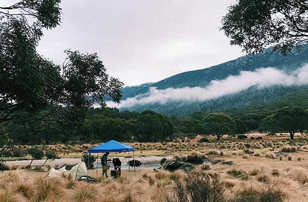 diggings-fog-afternoon