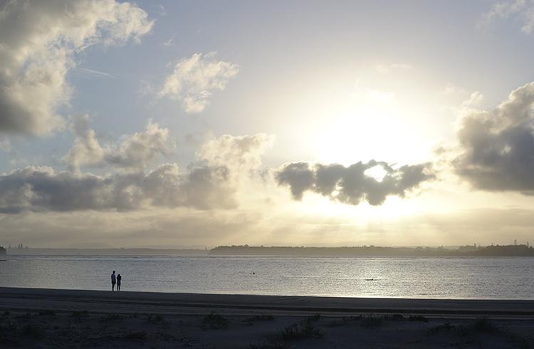 dolphin-fin-harrington-beach