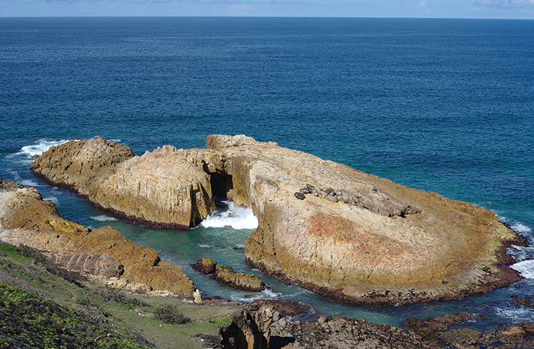 gap-crowdy-bay-national-park