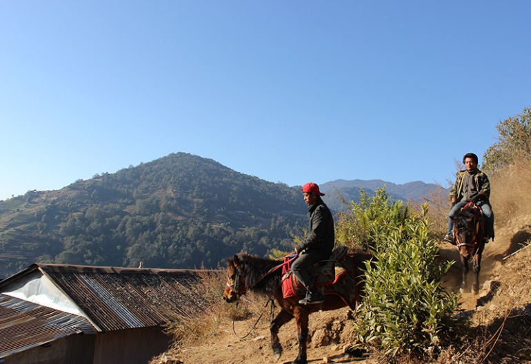 abc-day-two-donkeys-and-local-nepali-people-cameron-gardiner