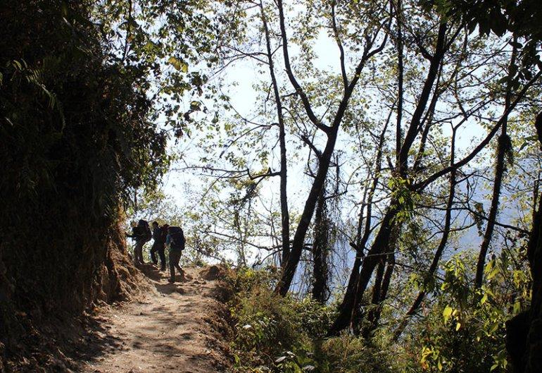 abc-day-two-morning-hiking-through-bushes-cameron-gardiner