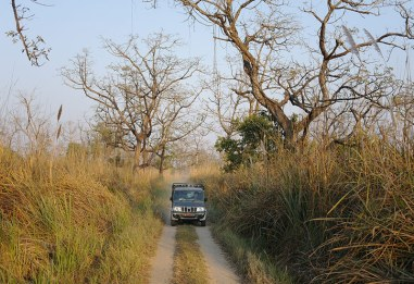 A jeep comes toward our jeep on a one-way track.