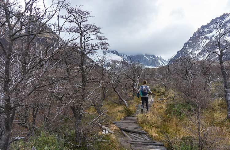 argentina-patagonia-laguna-torre-hike