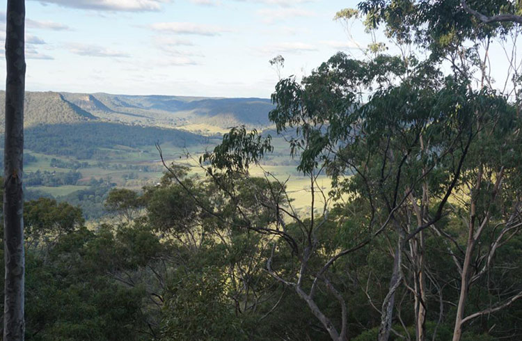 The view from Flat Rock Lookout.