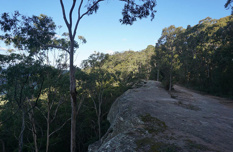 Flat Rock Lookout