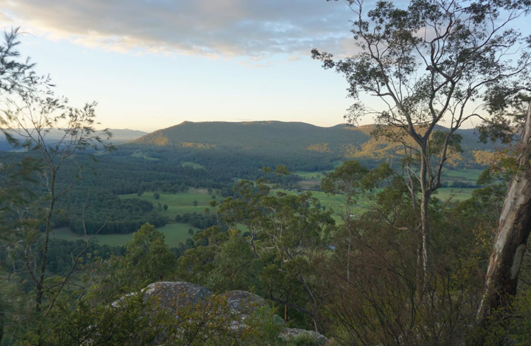 Overlooking the valley below the Watagans at sunset.